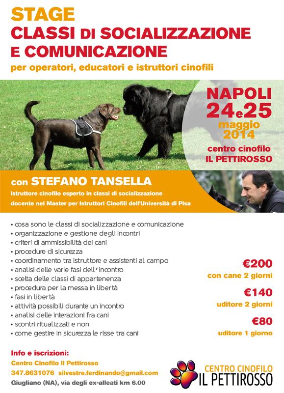 Stage classi di socializzazione e comunicazione con Stefano Tansella